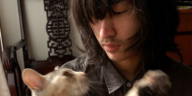 Dai Hasabe, 19, has been a hikikomori since age 11. Here he plays with a cat given to him by his parents. Photo / Getty