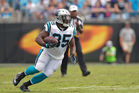 Mike Tolbert of the Carolina Panthers runs against the Minnesota Vikings. Photo / Getty Images