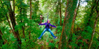 Rotorua Canopy Tours offers a zipline attraction through forest on the outskirts of the city.