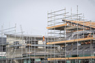The Government has announced a new housing development in Auckland. New Zealand Herald file photo by Greg Bowker.