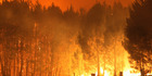 Scientists expect the number of rural fires in New Zealand will double - or even triple - by the end of the century. Photo: File