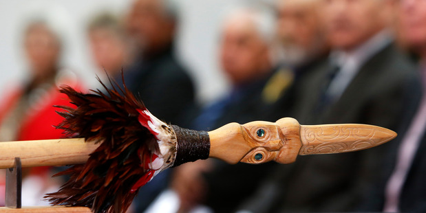 Is the district council doing enough to consider a Maori worldview in its decision making?