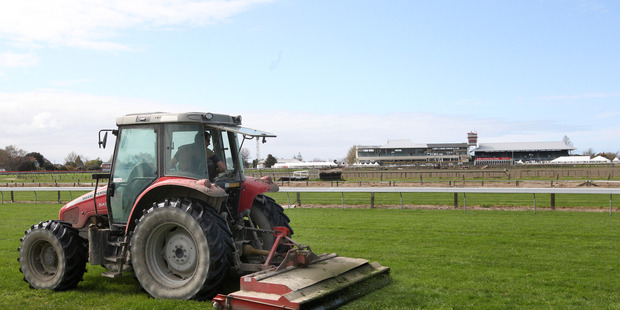 Final touches: Preparing the Hastings Racecourse track for a warm sunny spring day at the Livamol Classic raceday. Photo/Duncan Brown.