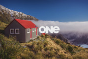 TV One will be rebranded TVNZ 1 from this weekend, after more than 40 years.