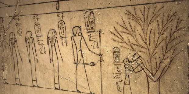 Hieroglyphics inside the tomb of Thutmose III, who has been regarded as Egypt's greatest conqueror. Photo / jakubkyncl.com