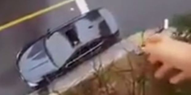 Loading The woman tosses the sandwich from the high-rise apartment straight into the car. Photo / YouTube
