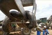 Constructions workers in Brazil were surprised to discover a giant anaconda on the site.
