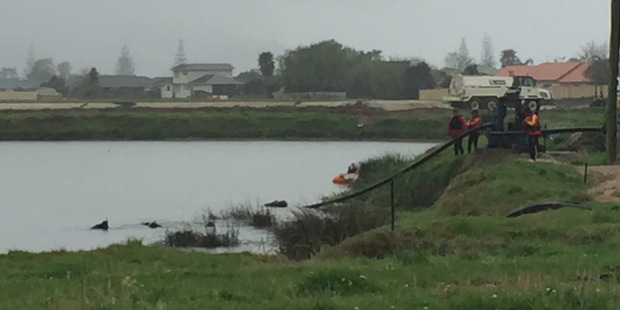 The police dive squad search the waterways. Photo / Belinda Feek