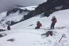 The Ruapehu Alpine Rescue team managed to pull the