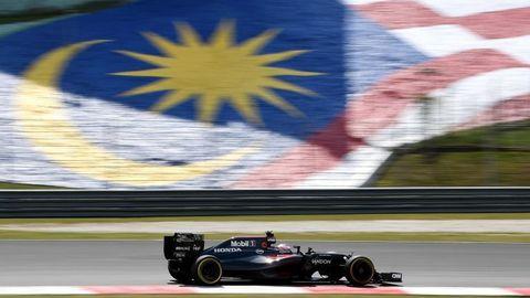 The Malaysian