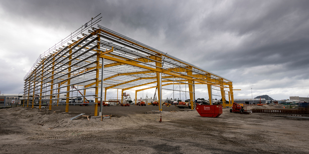 The Port of Tauranga is building a 22,000m² warehouse building at Cross Road, Sulphur Point. Photo/supplied