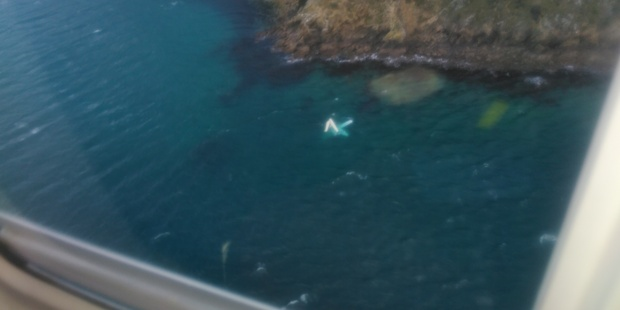 The float plane can be seen in the water near Ketu Bay. Photo/ Nelson Marlborough Rescue Helicopter