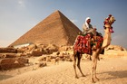 Tourists are warned against taking camel rides to the Giza pyramids. Photo / Getty Images