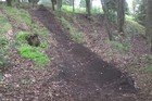A 30m dirt bike track was dug into the Mt Albert summit. Photo / Maunga Authority