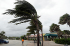 Palm trees sway in high gusts of wind in Vero Beach, Florida as Hurricane Matthew makes a path towards the state. Photo / AP