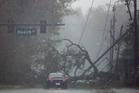 A car drives past a downed tree as Hurricane Matthew moves through Daytona Beach. Photo: AP Photo/Charlie Riedel