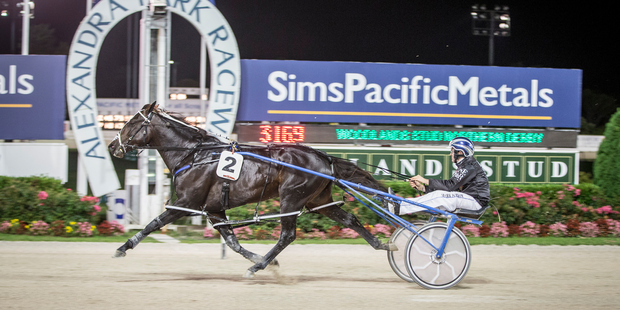 Lazarus has only had one open class start and was a brilliant third after settling back in an almost identical race two weeks ago. Photo / Michael Craig