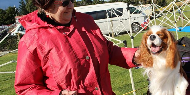 Lois Stricker and Memphis, her Cavalier King Charles Spaniel at last year's show.