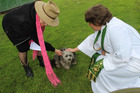Blessed: Lynette Morgans, left, with Charle and Revered Jo Crosse at the animal blessing last Sunday.