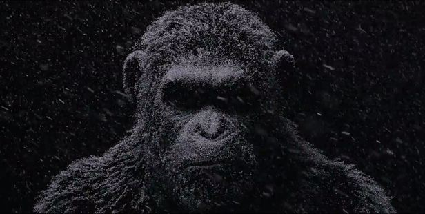 Loading In the 30-second trailer, a shadowy ape stands motionless in a snowstorm.