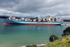 People crowded on the base track of Mauao to catch a glimpse of the biggest ship to ever come into Tauranga Harbour were not disappointed.  With cameras at the ready there were gasps of awe as the massive ship cruised into the harbour.