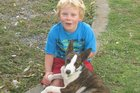 Jack's missing dog Toby looks similar to how he did when adopted by the Thomson family in 2010, except he had