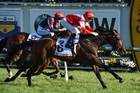 Mongolian Khan, with Opie Bosson on board, wins last year's edition of the Caulfield Cup. Photo / Getty Images