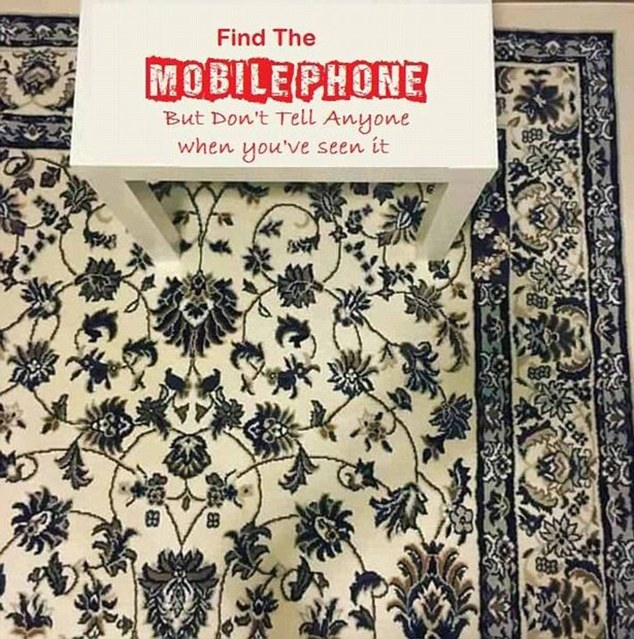 Can you find the mobile phone? Photo / Facebook