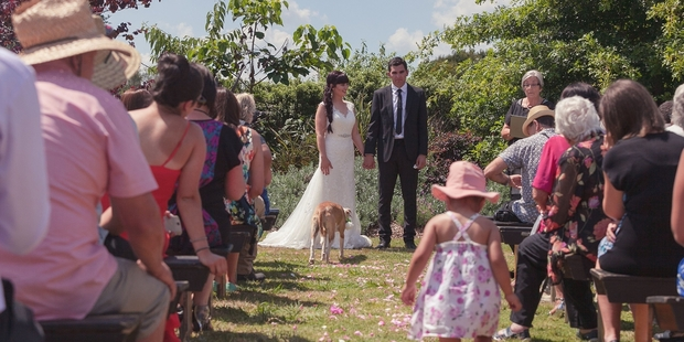 The One Wonderful Day wedding expo celebrates weddings with the uniqueness of weddings, such as this one where the couple married at home with their dog as the bridal party. Photo / Brooke Baker