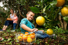 Sue White is starting the Community Harvesting Rotorua group. Pictured with Olivia Macmillan, 2, and Flynn Huruhanganui, 3. PHOTO/STEPHEN PARKER