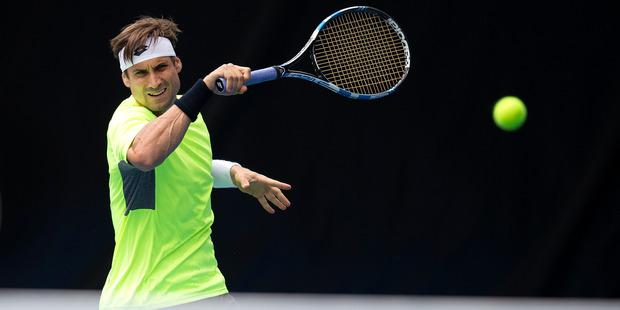 Loading Ferrer has had remarkable success in Auckland. Photo / Brett Phibbs