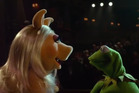 Miss Piggy and Kermit the Frog become Anastasia Steele and Christian Grey. Photo / YouTube