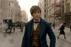 Eddie Redmayne as Newt Scamander in Fantastic Beasts and Where to Find Them. Photo / YouTube