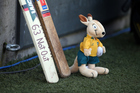A memorial cricket bat position along with a stuffed Wallaby placed in memory of Philip Hughes. Photo / Photosport