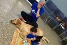 Autistic boy Kainoa Niehaus meets service dog Tornado thanks to 4 Paws For Ability. Photo / 4 Paws For Ability Facebook