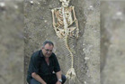 Fascinating archaeological discovery proves the existence of an ancient mermaid species.