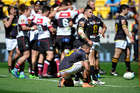 Wellington look on dejectedly as North Harbour celebrate their semifinal victory. Photo / photosport.nz
