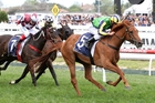 Eleonora wins the Ethereal Stakes at Caulfield. Photo / Bruno Cannatelli