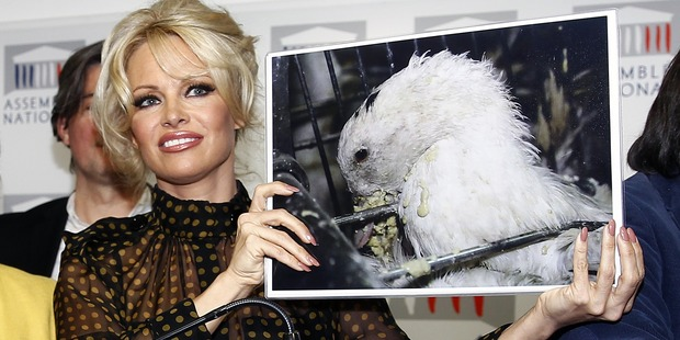 Pamela Anderson poses with a poster after a press conference at the French National Assembly on January 19, 2016 in Paris, France. Photo / Getty