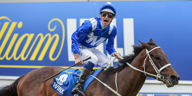 Winx ridden by Hugh Bowman wins William Hill Cox Plate at Moonee Valley Racecourse. Photo / Getty Images