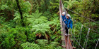 Rotorua CanopyTours. Photo / Andy Belcher