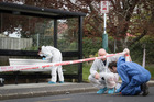 Police examine the scene on Hepburn Road, Glendene where a man was fatally stabbed on Saturday night. Photograph / Greg Bowker