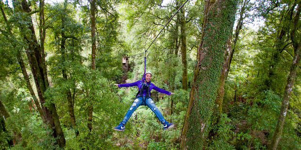 Rotorua Canopy Tours is leading the way in the revival of Rotorua's tourism industry.