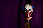 Police say the creepy clown fad has to stop. Photo / File