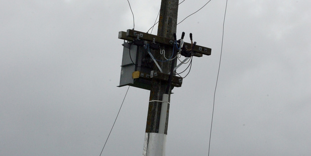 Whanganui power poles are not in danger of falling down says regional power provider.