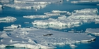 A proposal on making the Ross Sea a protected area may be the only one which advances this year. Picture / Getty Images