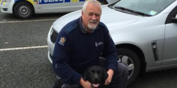 Senior Constable Phillip (Tiny) Taylor and Murphy (Rotorua) are in the narcotics detector category. Photo/NZ Police