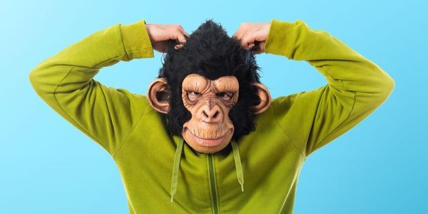 Men wearing monkey masks scared two teenagers earlier this month. Photo / 123RF