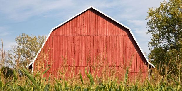 The rule relates to rates and repair costs on farm houses and buildings. Photo / 123rf