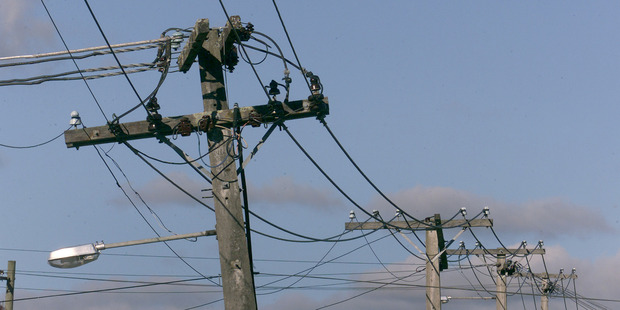 Three separate investigations have been launched into Aurora and Delta amid claims their failure to replace dangerous power poles could cost the Dunedin City Council millions.